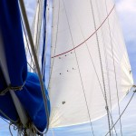fiji-sailing-new-jib_L